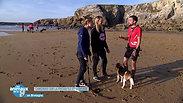 Les Animaux de la 8 - Canicross dans le Morbihan avec le Teamcanicross56