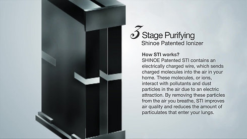 Shinoe Purification System