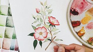 Wild Dog Rose Branch