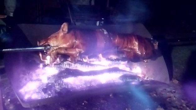 Le cochon à la broche ou au four
