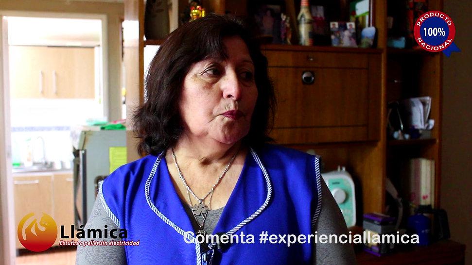 #ExperienciaLlámica: Libertad