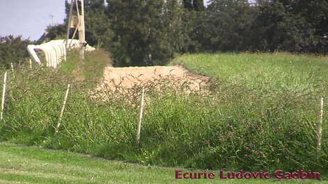 Ecurie Ludovic Gadbin Juillet 2020