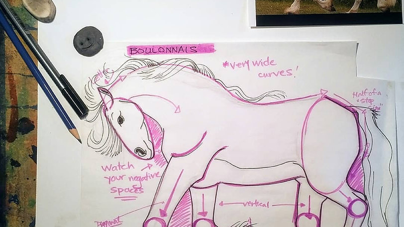 Drawing a French Boulonnais Horse