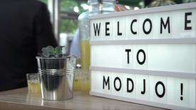 Mob Hotel