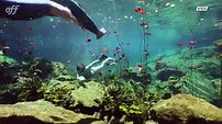 Mexican Cenotes Part 2, Canal OFF TV