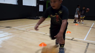 Partnered / cone dribbling drills