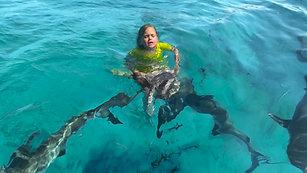 Shark Whisperer Teaser