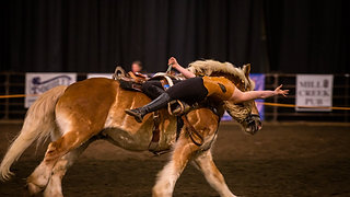 2020 Horse Expo