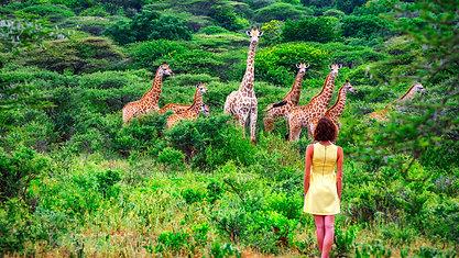 Sudafrica - Lesotho - eSwatini