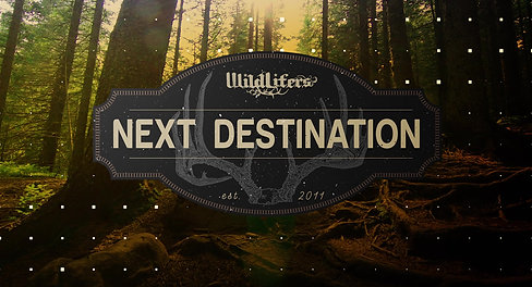 Next Destination Open