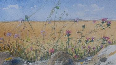 Joan Broadbent Artist
