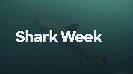 Shark Week Welcome Spanish