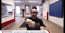 BUNDLED Siu Nim Tau Tutorial - Sifu Alex Richter