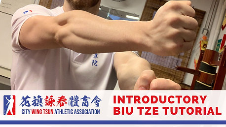 Biu Tze Introductory Tutorial | Sifu Alex Richter
