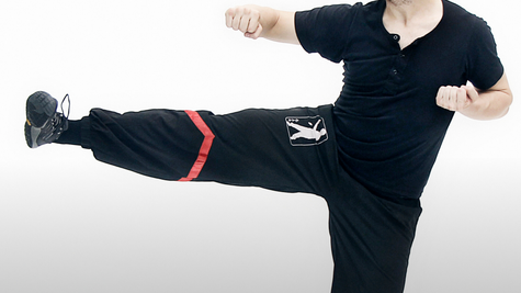 Complete Wing Tsun Kicking Course
