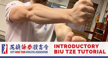 Biu Tze Introductory Tutorial