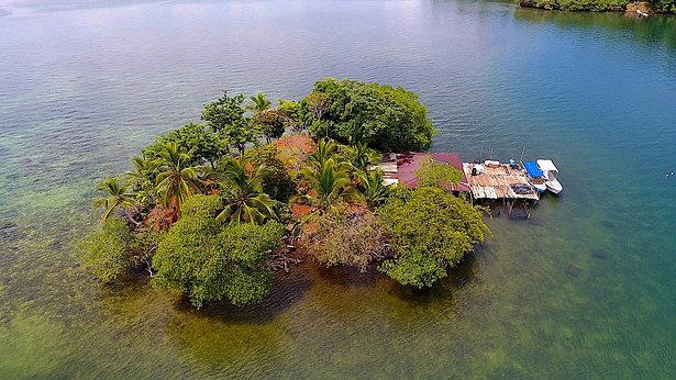Hummingbird Island