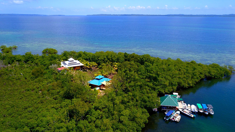Private Island with Bar/Yoga and house