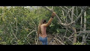 Experience Video by Julia @ Monara Sarisara Tour Company - Sri Lanka