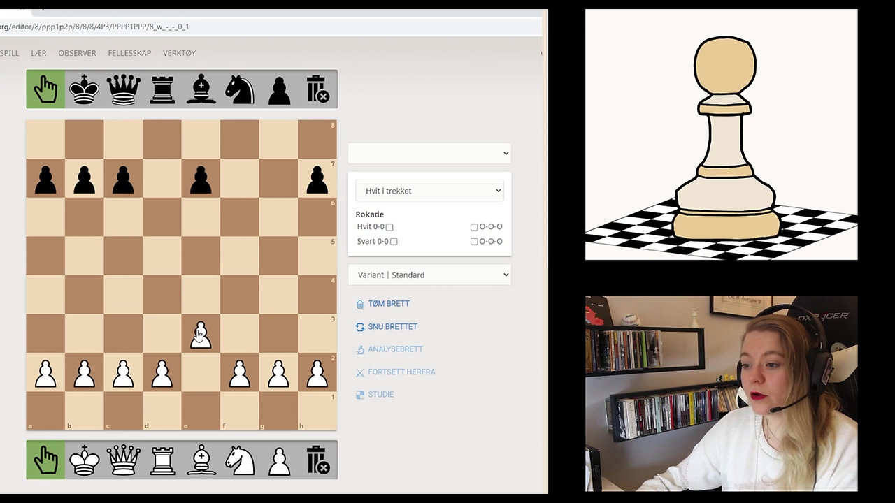 Sjakkregler 101