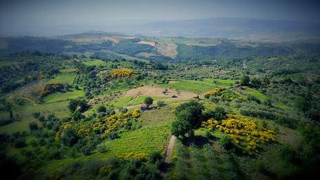 The Heart of Tuscany