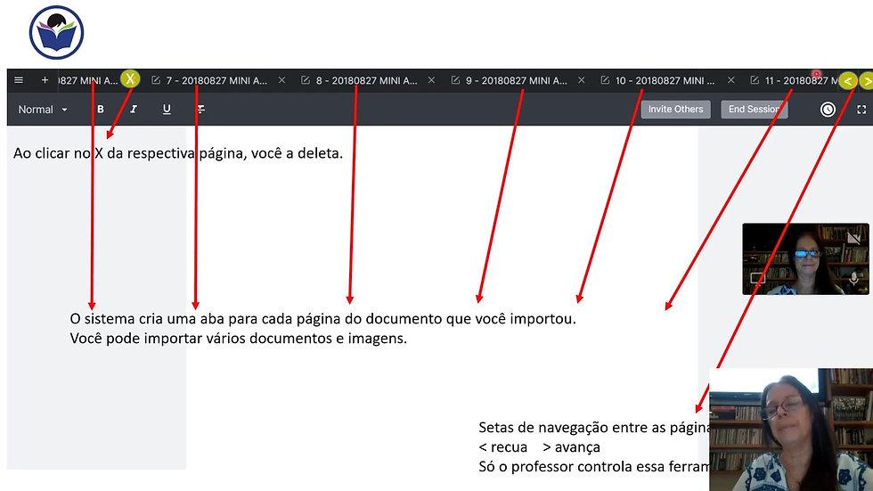 Tutorial The Lesson Space em português para aulas on -line.