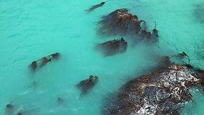 Aerial | Big Sur 4K