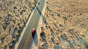 Aerial | Joshua Trees 4K