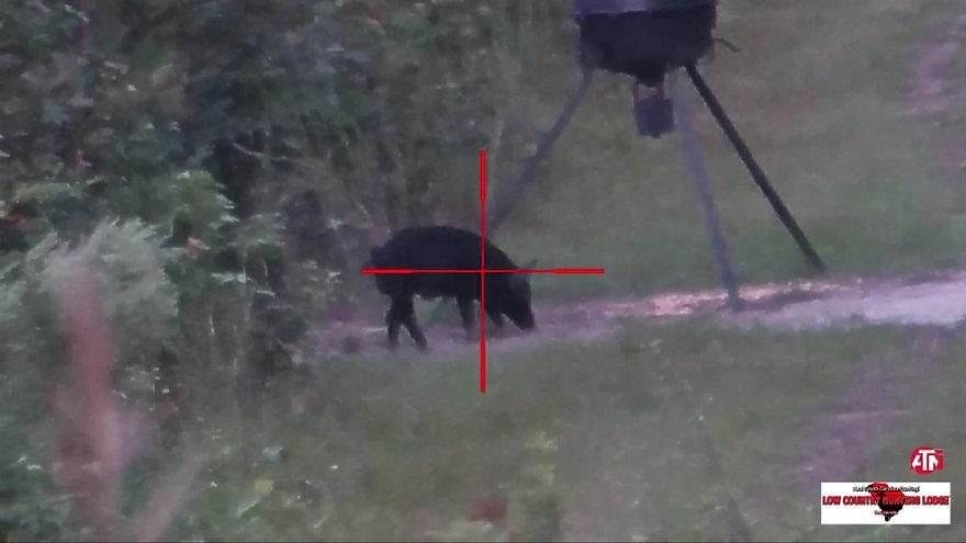 LCHL Hog Hunt - October 2018