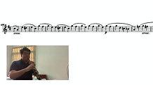 Beethoven 9 Oboe Excerpt