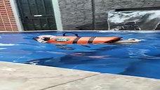 Swimming10