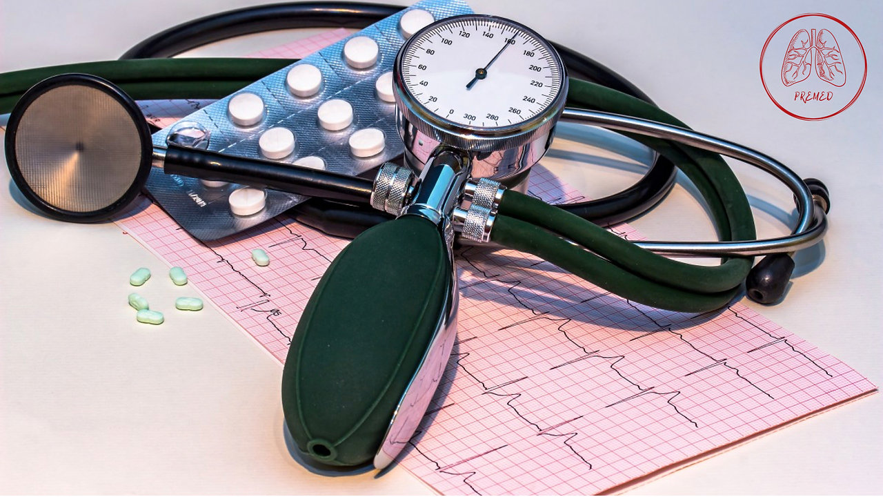 Basic ECG Introduction and Q&A