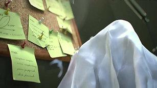 Video || Paper WWF