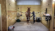 Wish On A Star- Tack Up