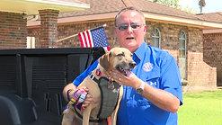 Mayor_Pet Emergency Info