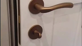 M&T levers and magnetic privacy lock