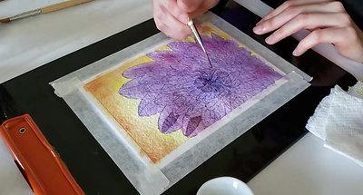 Watercolour Hyperlapse - Purple Flower