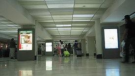 Arrivals 2006