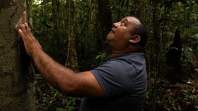 Brigada Amazônia
