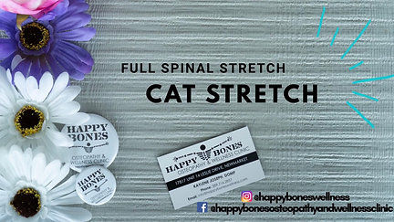 Full Spinal Stretch - Cat Stretch