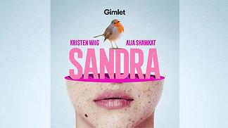 SANDRA Score