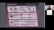 Mesosil