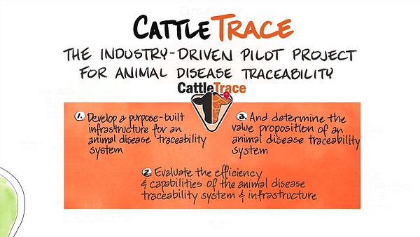 CattleTrace Overview