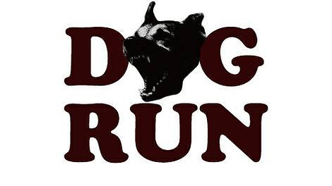 2020.07.05 DOG RUN