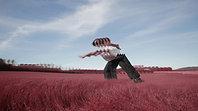 Field Clip by Scotty Hardwig