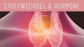 Stoffwechsel & Hormone