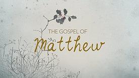 3.1.20 Matthew 14:22-36