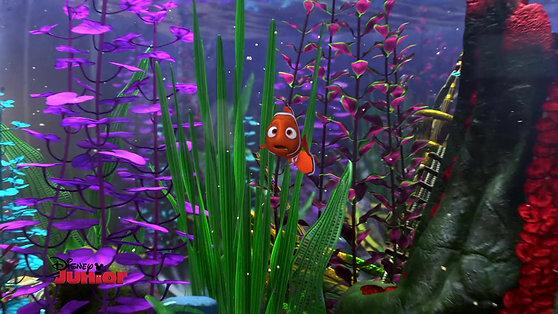 """Disney's """"Finding Nemo"""" TV Promo Narrator"""