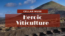 Heroic Viticulture