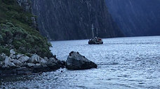 From the boat in Milford Sound